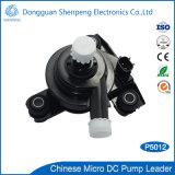 BLDC mini elektrisches Auto-abkühlende Zirkulations-Wasser-Pumpe