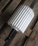 Generatore a magnete permanente di CC di energia libera 1kw 48V