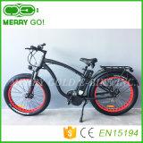 la montaña eléctrica E del neumático gordo de 48V 1000W Ebikes Bikes la E-Bicicleta hecha en China