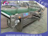 Repostería árabe de la máquina máquina de pan de pita Flor//rodillo Croissant la máquina de moldeo