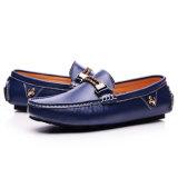 Schoenen de van uitstekende kwaliteit van het Leer van Mensen vormen Schoenen (FTS1019-19)