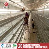 H galvanisé type Cage de poulet pour la vente