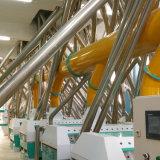 Norme européenne 50T/D Ligne de la farine de blé de mouture