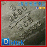 Didtek Fully Open High Disc Presses Swing Check Valve