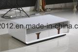 De moderne Vastgestelde Eettafel van de Eetkamer en MDF van de Stoel van de Reeks (ct-190+ 73#) Lijst