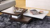 MDFのベニヤ機能表2017特別なデザインコーヒーテーブル(CJ-M10B)