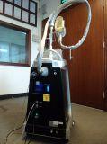 La grasa de la vibración de cuerpo entero la congelación de reducir el precio de la crioterapia de máquinas de belleza Etg50-3S