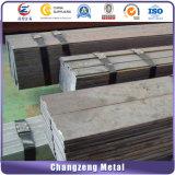 Q235 barre de fer plat (CZ-F59)