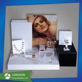 De duidelijke AcrylVertoning van Juwelen, de Reeks van de Vertoning van Juwelen