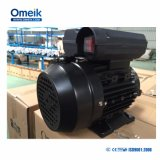 Moteur à induction Omeik IEC (MON90L-2)