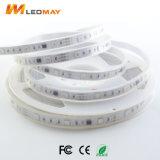 LEIDENE van de helderheid lichte lamp SMD5050Magic met Ce, FCC RoHS Certificatie