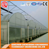 Handelsplastikgewächshaus 200micron für das Rose-Pflanzen