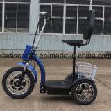 Foldable 3車輪の障害者のための電気観光の手段の電気バイク