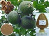 ほとんどの普及した柑橘類のAurantiumのエキスの粉