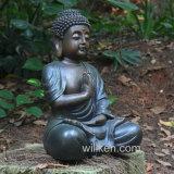 Tuin die de Standbeelden van Shakyamuni verfraaien Boedha