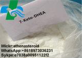 99% 고품질 뚱뚱한 가열기 백색 분말 7 Keto Dehydroepiandrosterone