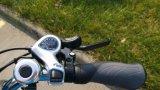 저가 250W 700c*1.75/2.0 Kenda 타이어 전기 도시 자전거