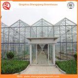 Van de Spanwijdte van de landbouw de MultiSerre van het PC- Blad voor Groenten/Bloemen/Tomaat