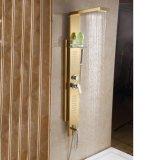 Panneau d'or de douche d'acier inoxydable de Fyeer avec la tête de douche détachable
