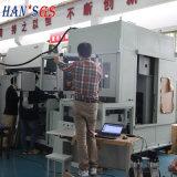 De Apparatuur van het Lassen van het Toestel van de laser voor de Duitse Reeks van gelijkstroom Lasers