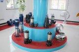 AV/as/Wq 시리즈 잠수할 수 있는 하수 오물 펌프