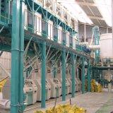 アルジェリアの市場日の小麦粉の製造所ごとの50トン