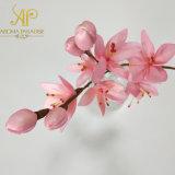 Mazzo Handmade di vendita caldo delle filiali di 28cm H Sakura del fiore asciutto per il diffusore a lamella domestico