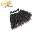 Роскошная девственница Raw Человеческие волосы индейца высокого качества волос