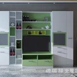 Governo del Pantry della mobilia del salone con la mensola del Governo e di libro della TV