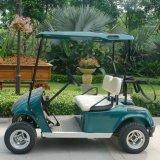Véhicule coloré personnalisé de golf d'Electrtic diplômée par CE de 2 portées (DG-C2)