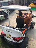 安い中国人4の車輪の大人のための電気小型スマートなバイク車