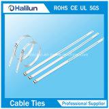 304 de haute qualité en acier inoxydable 316 L'étape de l'échelle unique attache de câble en manufacture