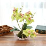 Phalaenopsis Trifurcation искусственные цветы Искусственные растения бонсай