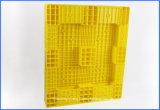 صفراء لون [هدب] جديدة يعبّأ جعة وشراب بلاستيكيّة من [فوود غرد] من