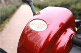 150kg de carga de tamaño mediano de alta calidad Scooters de movilidad eléctrica para adultos