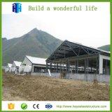 Modèle de retrait de cloche d'entrepôt de structure métallique de grande envergure de Premade grand