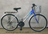 26 велосипед/велосипед города дюйма 7speed для женщины Sh-CB003