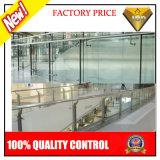 De hete Posten van het Roestvrij staal van de Verkoop voor het Traliewerk van het Glas