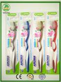 Casella di alta qualità che imballa il forte Toothbrush dell'adulto della maniglia