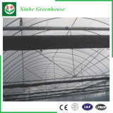 Земледелие/коммерчески парники тоннеля полиэтиленовой пленки для клубники/Rose