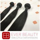高品質の自然でまっすぐなバージンのマレーシア人の毛