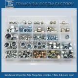 Écrou de blocage de nylon de M10-1.5 SS304 DIN985