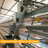 Qingdao 판매를 위한 유형 최신 복각 직류 전기를 통한 자동적인 가금 층 감금소