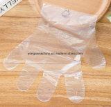 Preiswertes Preis Wegwerf-PET Plastikprüfungs-Handschuh, der Maschine herstellt