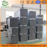 アルミニウム熱い販売の容易なインストール最上質のポリカーボネートのプラント温室