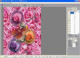 Treinamento em impressão 3D (GZY-0001)
