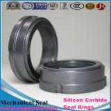 Funda de rodamiento de cerámica del carburo de silicio usada en ruso