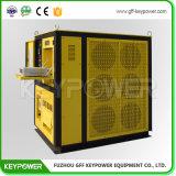 300kw Charger une Banque d'essai du générateur de couleur jaune