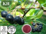 ~ nero naturale puro 25% dell'antociano 1% dell'estratto di Chokeberry di 100%