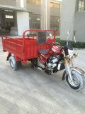 250cc 물 냉각 5개의 바퀴 화물 세발자전거